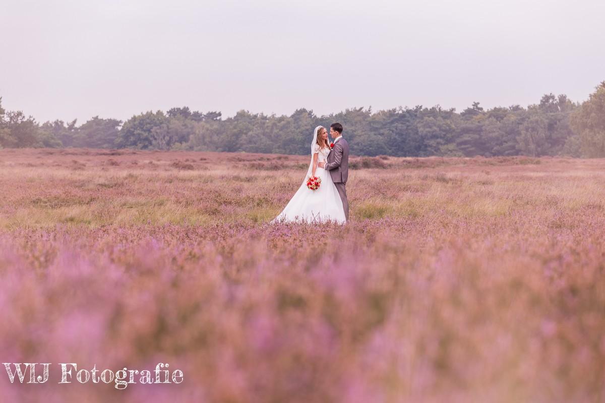 Andries en Karlijn trouwen in Huizen en de Tafelberg